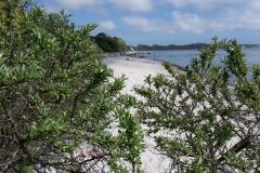 Strand in Richtung Kap Arkona